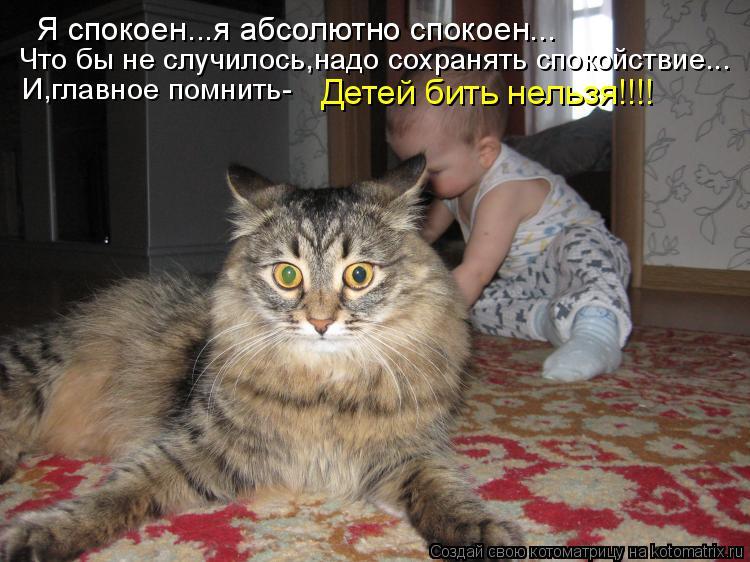 Котоматрицы-5