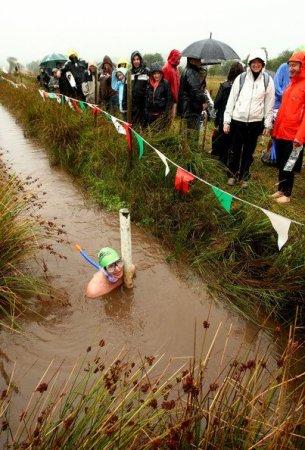 Чемпионат по заплыву в канаве