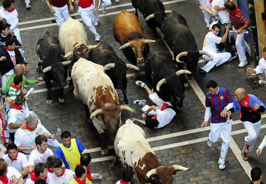 Забег с быками    ( памплон, испания  )