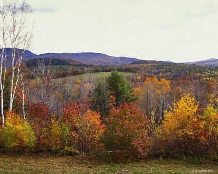 Осень наступила