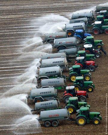Молоко в землю — к урожаю?