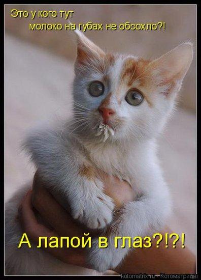 Счастье есть ! ( 2 )