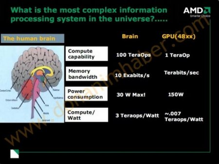 Учёные считают, что в будущем содержимое мозга можно будет загрузить в компьютер