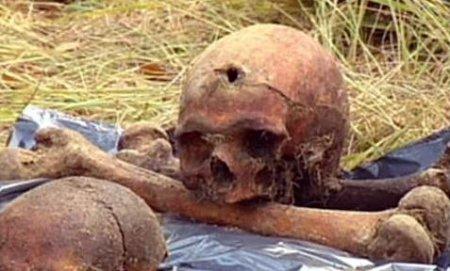 Дубовский лес напомнил об ужасе 38-го
