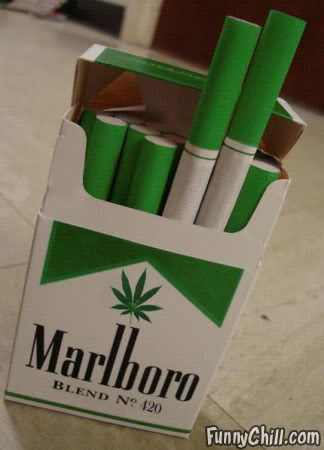 Шесть самых популярных мифов о легализации наркотиков