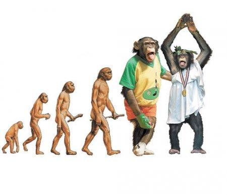 Происхождение жизни на Земле, как устроена Вселенная, и что ждёт «человека разумного» в будущем.