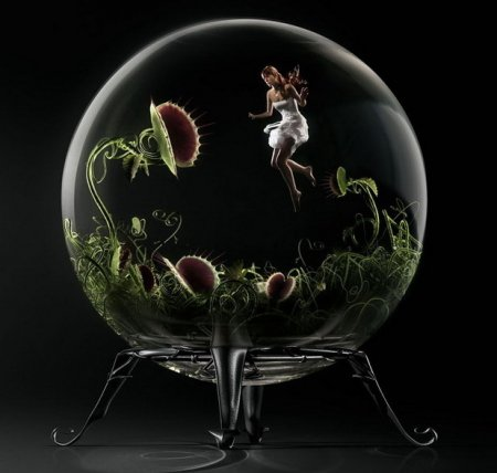 Креативные фотоработы от Dominique Piccinato