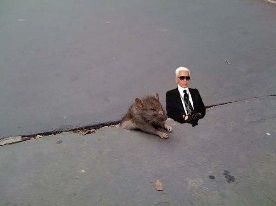 """Грустная """"героиня"""" интернета"""