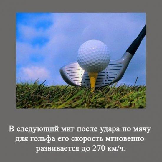 Интересные факты  (4)