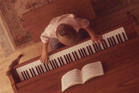 Профессия: Музыкант