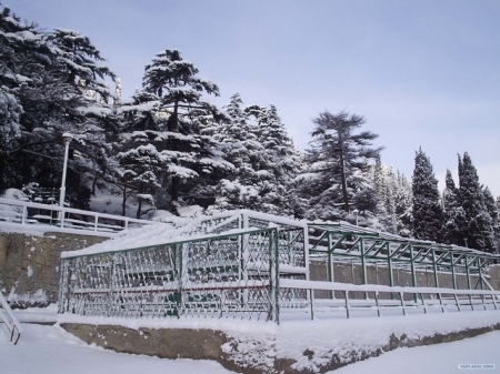 Снег в Гурзуфе.