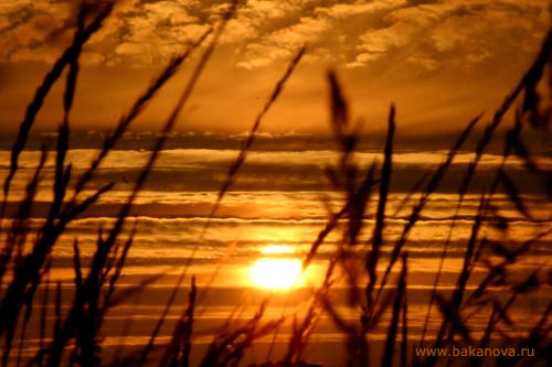 Фотосессия солнца - 2