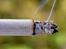 Сигареты популярных марок кишат опасными бактериями