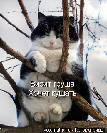 �����������-7