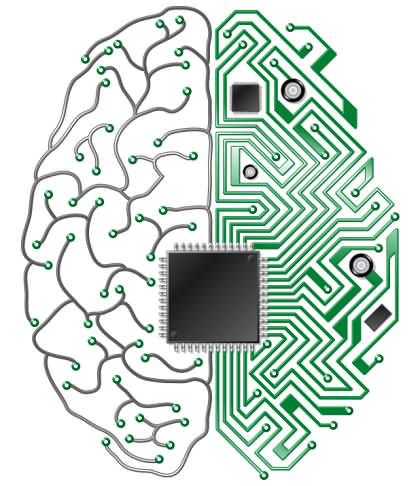 IT-байки: Эмуляция мозга: мышка, кошка - кто следующий?