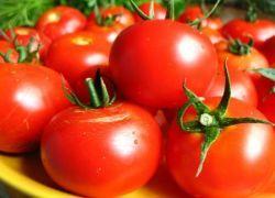 Новые помидоры по вкусу напоминают виноград