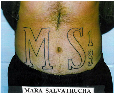 Mara Salvatrucha MS 13