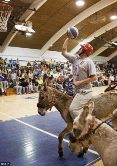 Ослиный баскетбол запретили