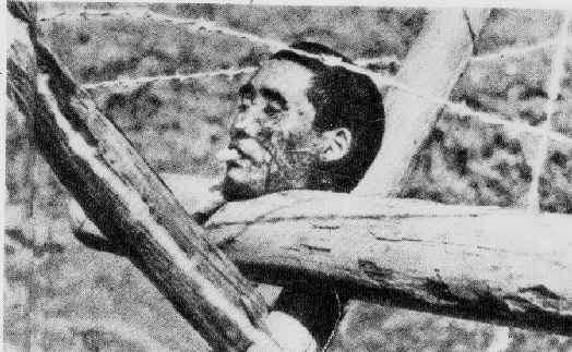 Резня в Нанкине