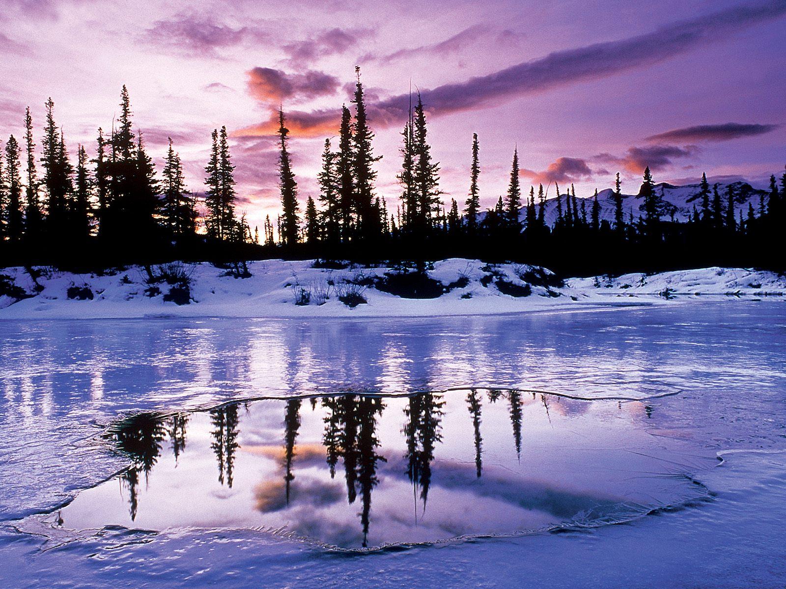 природа озеро отражение лес деревья снег зима без смс
