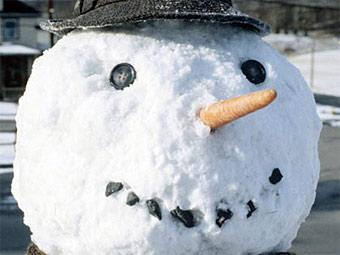 Шотландскую семью арестовали за лепку снеговика