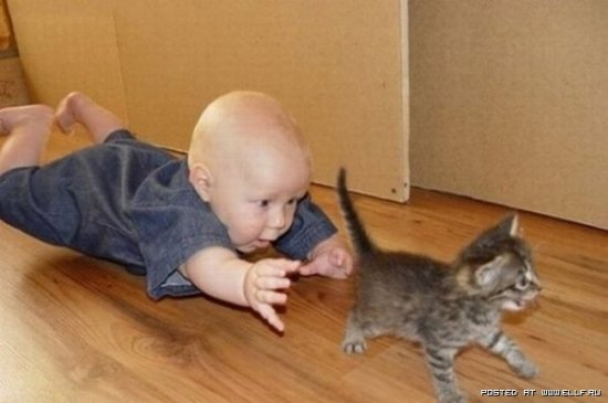 Дети и неприятности