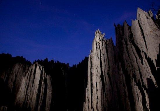 Каменный лес на Мадагаскаре