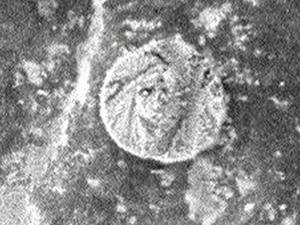 На Марсе найдена монетка