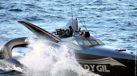 Победа японских китобоев