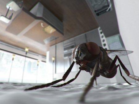 Красивые фото для рабочего стола 1600x1200 (4;3) №1