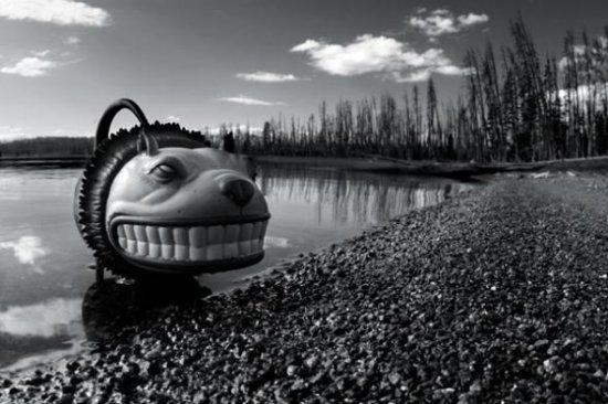 Игрушечные фото Brian McCarty