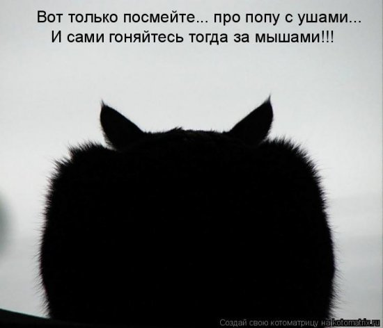 �����������-13