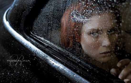 Фотограф Steven Lippman