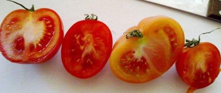 Сравните цены на белорусский, турецкий и испанский помидоры