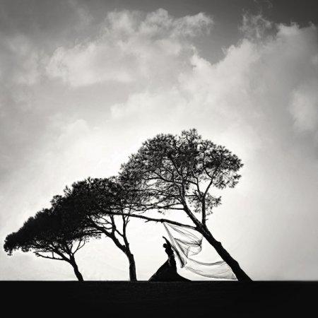 Фотограф Hale Cokyuruyen