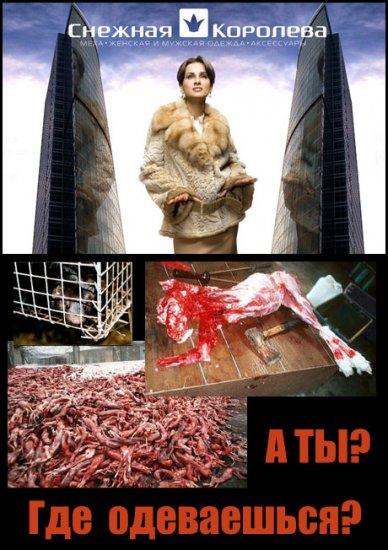 Акции защитников животных