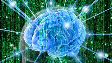 Повреждения головного мозга могут влиять на духовное развитие человека