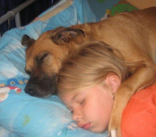 Приятных  снов !