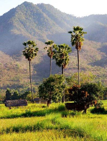 Восточная Индонезия