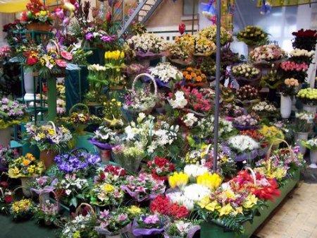 Из-за «14 февраля» и «8 марта» голландская роза вырастет в цене на 5 тысяч