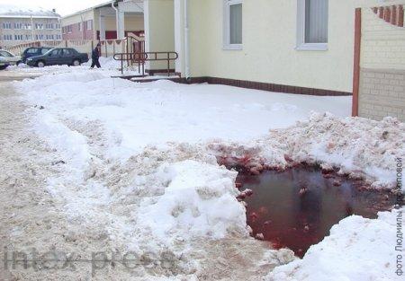 Улицу в Барановичах залило кровью