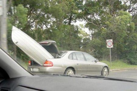 Дорожные приколы