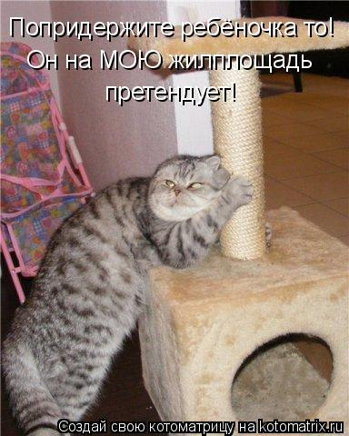 Котоматрицы-21