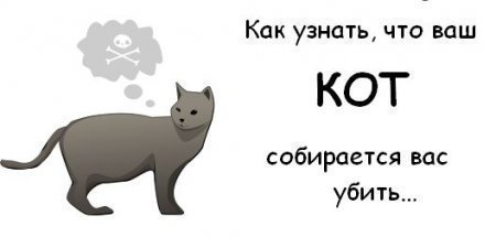 АХТУНГ!!! АЛАРМ!!! котэ убицо какбэ!!!