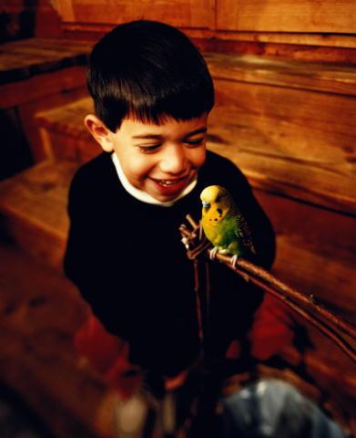 Птички. Часть 3