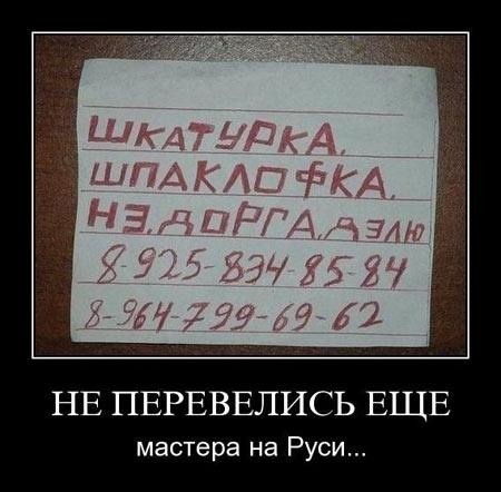 Демотиваторы333