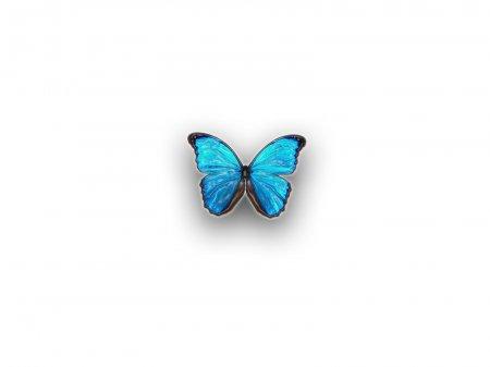 Бабочки. 1600x1200