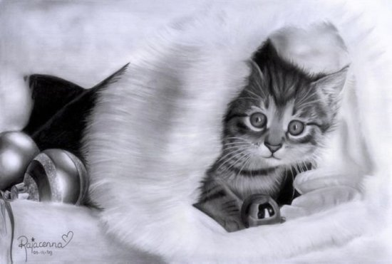 Карандашные рисунки