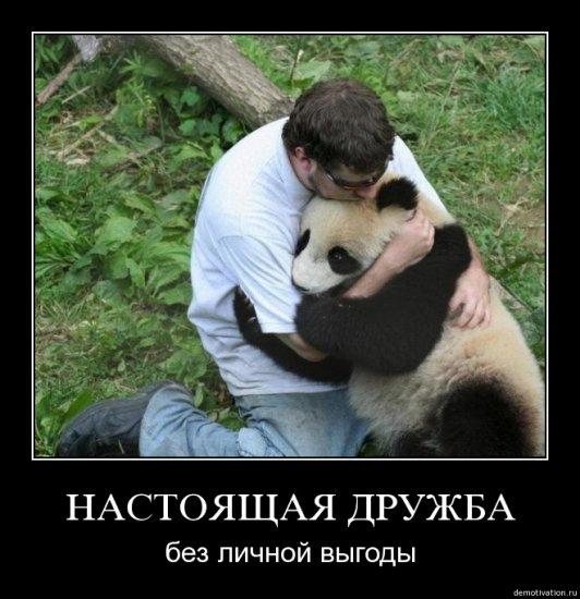 Демотиваторы (С животными)