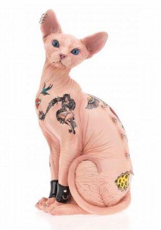 Садо-мазо коты
